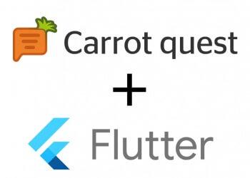 carrot integration.jpg